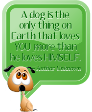 A dog is the only thing on Earth that loves YOU more than he loves HIMSELF. Author - Unknown