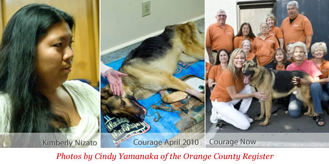 Kimberly Nizato - Courage's previous owner, Courage then and Courage now - photos by Cindy Yamanaka of the Orange County Register