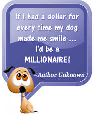 If I had a dollar for every time my dog made me smile, I'd be a millionaire! Author Unknown