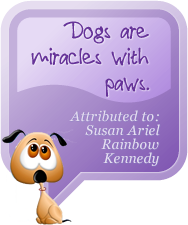 from our Dogisms collection: Dogs are miracles with paws.