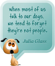 When most of us talk to our dogs, we tend to forget they're not people. Julia Glass