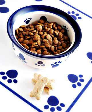 dry dog food in a white ceramic bowl with blue dog paw prints